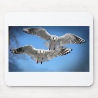White Seagulls In Flight Mouse Pad