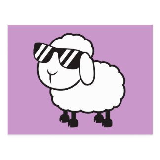 White Sheep in Sunglasses Cartoon Post Cards