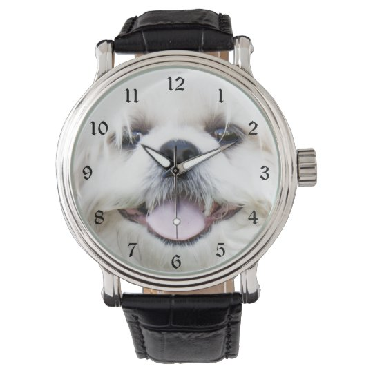 White shih tzu face watches