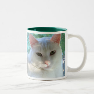 White short hair cat mug with verse
