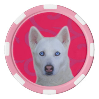 White Siberian Husky Clay Poker Chips, Pink Stripe Poker Chip Set