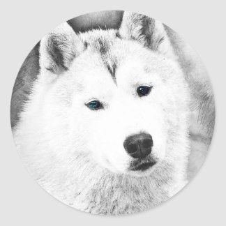 White Siberian Husky w/ Blue Eyes Fine Art Sketch Classic Round Sticker