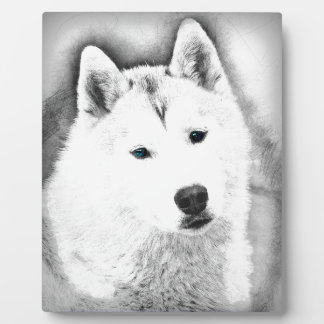 White Siberian Husky w/ Blue Eyes Fine Art Sketch Plaque