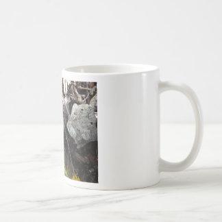 White Snail Shell Basic White Mug