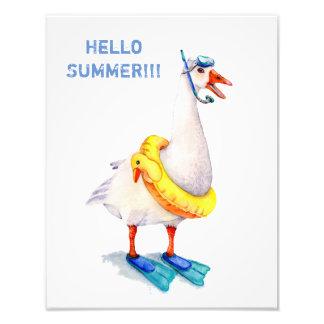 White Snorkeling Goose Photo Print