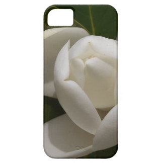 white southern magnolia flower bud iPhone 5 cover
