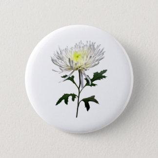 White Spider Mum 2 Inch Round Button
