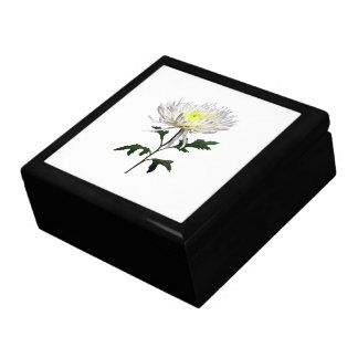 White Spider Mum Gift Box