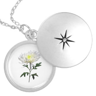 White Spider Mum Silver Plated Necklace