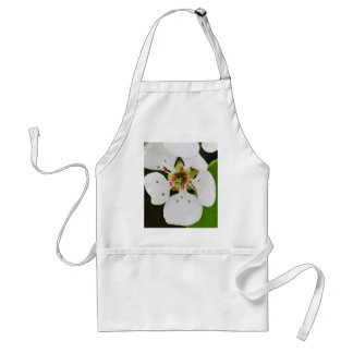 White spring bloom aprons