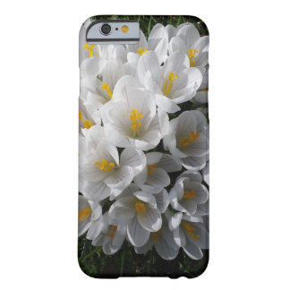 WHITE SPRING CROCUSES iPhone Case