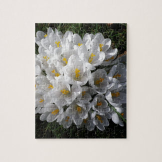 WHITE SPRING CROCUSES JIGSAW PUZZLE