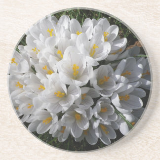WHITE SPRING CROCUSES Round Drink Coaster