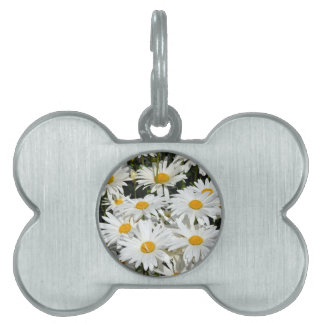 White spring daisies pet tag