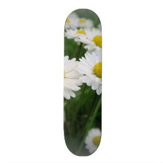 white spring flower in green grass skate decks