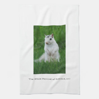 White Squirrel of Brevard Kitchen Towel