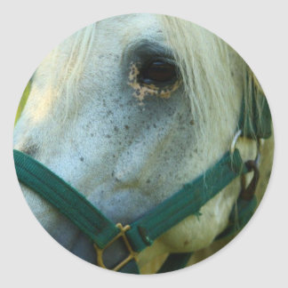 White Stallion Paper Products Classic Round Sticker