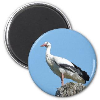 White Stork 2.0 (Storch) Magnet