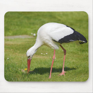 White stork on grass mouse pad