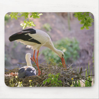White storks on its nest mouse pad