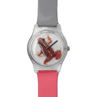 White-striped Poison Dart Frog Wristwatches