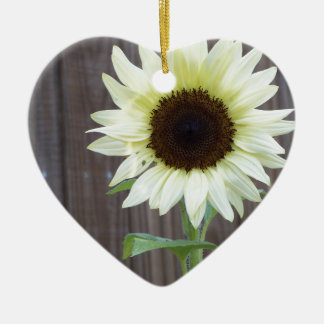 White sunflower against a weathered fence ceramic ornament