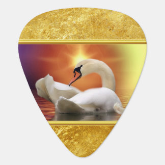 White Swan in a lake with a orange gold sunset Guitar Pick