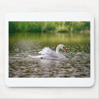 White swan on a lake mouse pad