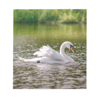 White swan on a lake notepad