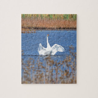 White Swan Solo.JPG Jigsaw Puzzle