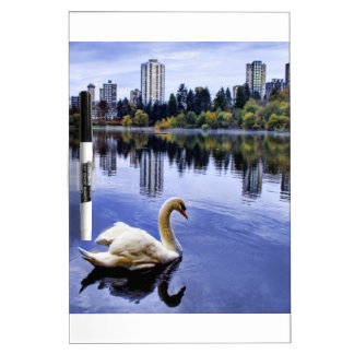 White Swan Swimming In The City Dry Erase White Board