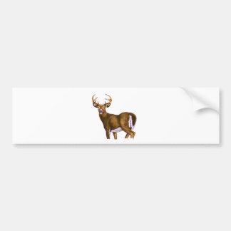 White Tail Deer Buck Bumper Stickers