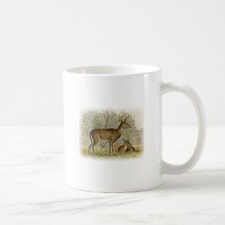 White Tail Deer Buck - Doe Coffee Mug