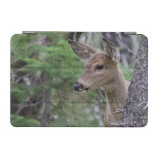 White Tail Deer Portrait Fishercap Lake iPad Mini Cover