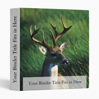 White-tailed Buck 3 Ring Binders