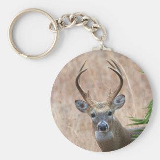 White-tailed Buck Keychain