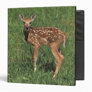 White-tailed deer fawn 3 ring binder