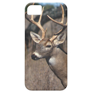 White-Tailed Deer - iPhone 5 Cover