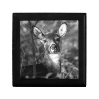 White-Tailed Deer Keepsale Box