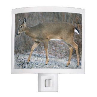 White-Tailed Deer Night Light