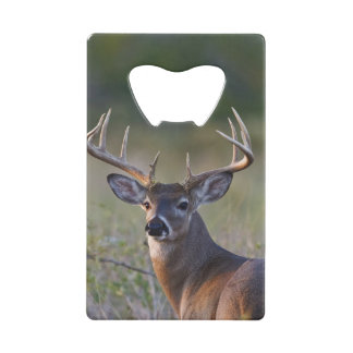 white-tailed deer Odocoileus virginianus) 2 Wallet Bottle Opener