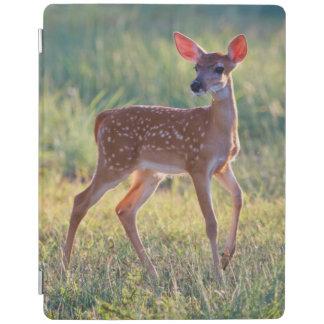 White-Tailed Deer (Odocoileus Virginianus) Fawn iPad Cover