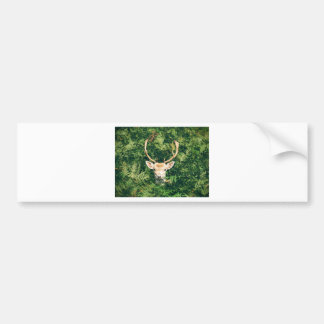 White-Tailed Deer Peeking Out of Bushes Bumper Sticker