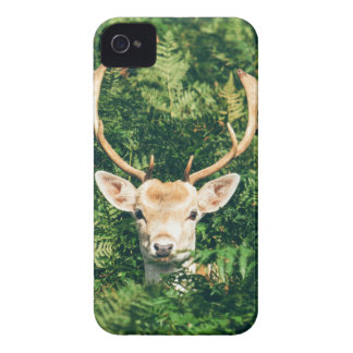 White-Tailed Deer Peeking Out of Bushes iPhone 4 Case-Mate Cases