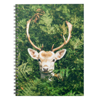 White-Tailed Deer Peeking Out of Bushes Notebooks