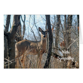 White Tailed Deer Sympathy Card