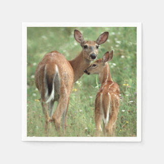 White-tailed Deer with her Spotted Fawn Paper Napkin