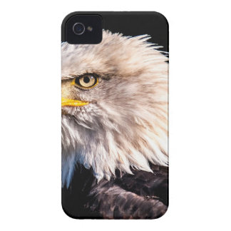 White Tailed Eagle Case-Mate iPhone 4 Cases