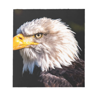 White Tailed Eagle Notepad