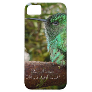 White-tailed Emerald iPhone 5 Cover